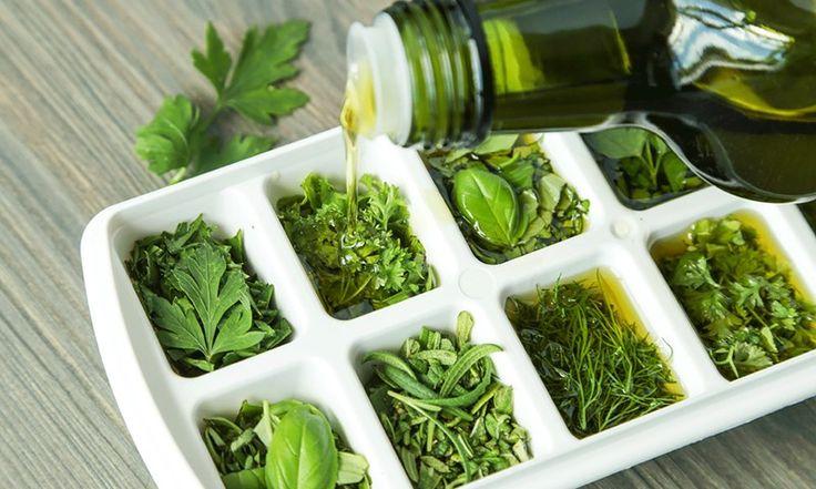 Trikset som får urter til å vare i 6 måneder | EXTRA -