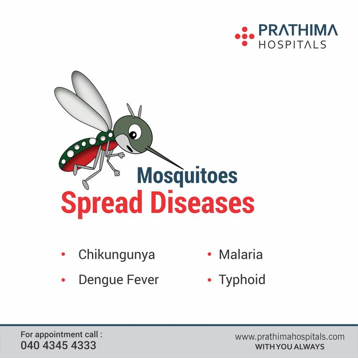 #prathimahospitals #mosquitoSpreadDiseases Mosquitoes spread the diseases like #Malaria, #Dengue, #Chikungunya, and # Typhoid. Prevention is better than cure. Take prior preventions to avoid mosquito bytes and diseases. Keep your surroundings clean, clear stored water and make sure your home and surroundings are clean and clear.