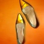 Zapatos Metálicos.