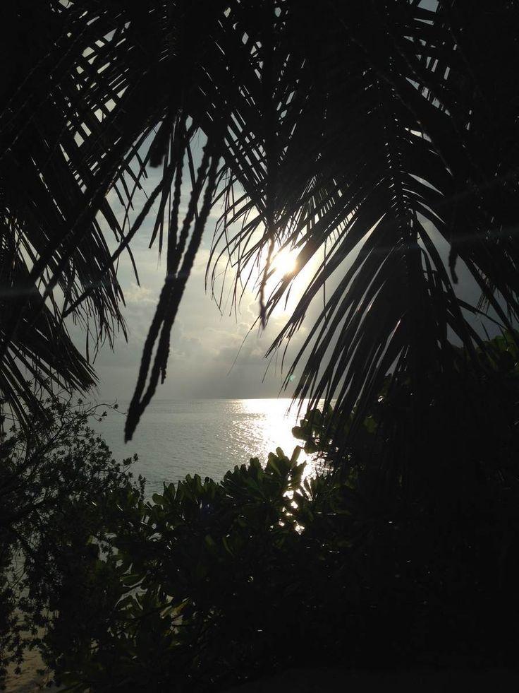 MIP 002 – Thoddoo das fruchtige Paradies – Inselnauten Malediven Backpacker Blog und Podcast