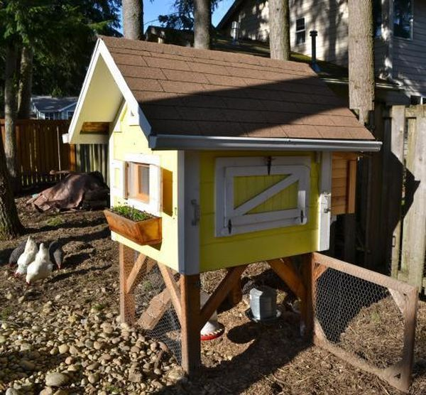 Cute chicken coop plans - photo#31