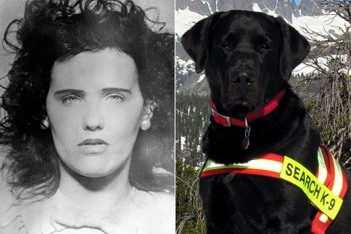 (Feb 3, 2013 4:45 AM EST Daily Beast.)  One of the nation's most gruesome unsolved murders (the Black Dahlia homicide) now has a canine on the case—and Buster has sniffed out a clue. You can't hide from Labs & their noses.