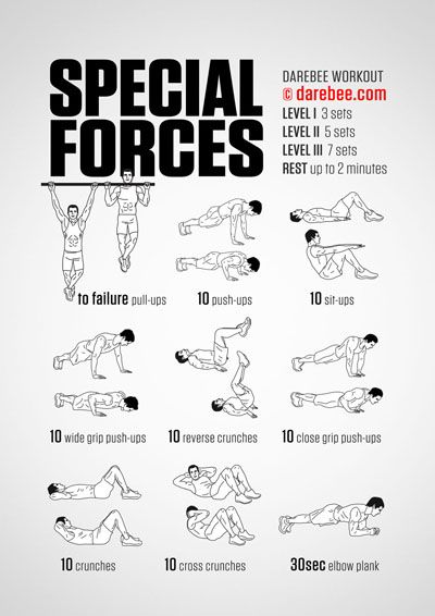 Special Forces Workout                                                                                                                                                                                 More