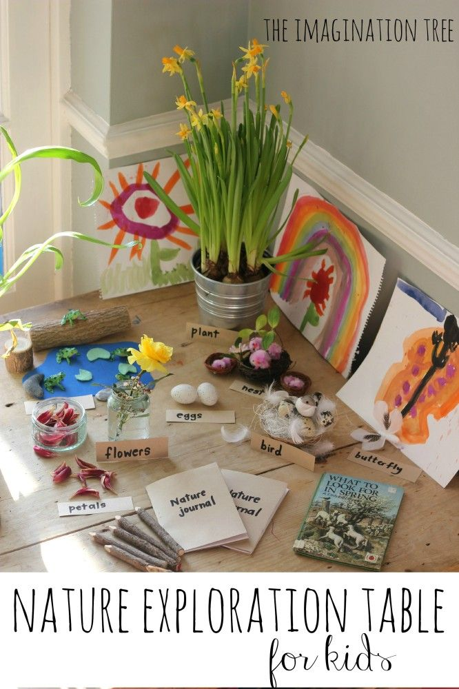Set up a nature exploration table to learn about Spring!