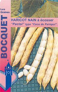 Haricot nain à écosser Pactol 90g (type coco paimpolais) | Les Graines Bocquet