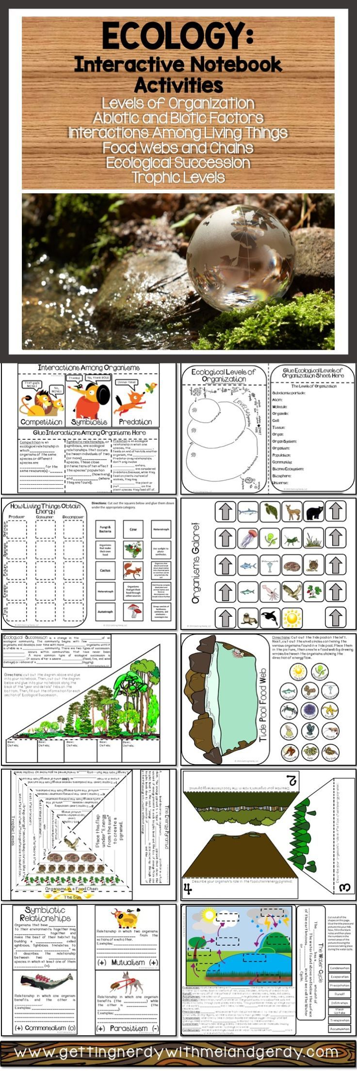 Ecology Issues Project - The Biology Corner