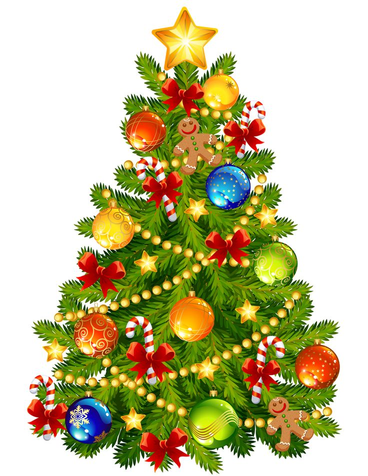 https://www.google.ca/search?q=christmas tree vector image