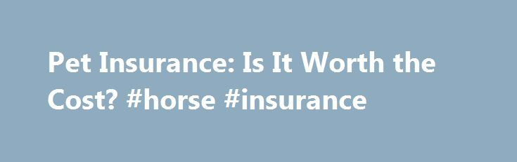 Pet Insurance: Is It Worth the Cost? #horse #insurance http://insurances.remmont.com/pet-insurance-is-it-worth-the-cost-horse-insurance/  #pet insurance cost # Pet Insurance: Is It Worth the Cost? December 29th, 2010 (by Sierra Black ) Comments (98) This post is from staff writer Sierra Black. Sierra writes about frugality, sustainable living, and getting her kids to eat kale at Childwild.com . My cat, Monster, died two weeks ago after a struggle withRead MoreThe post Pet Insurance: Is It…