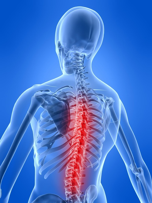 New Hope for Reversing the Effects of Spinal Cord Injury