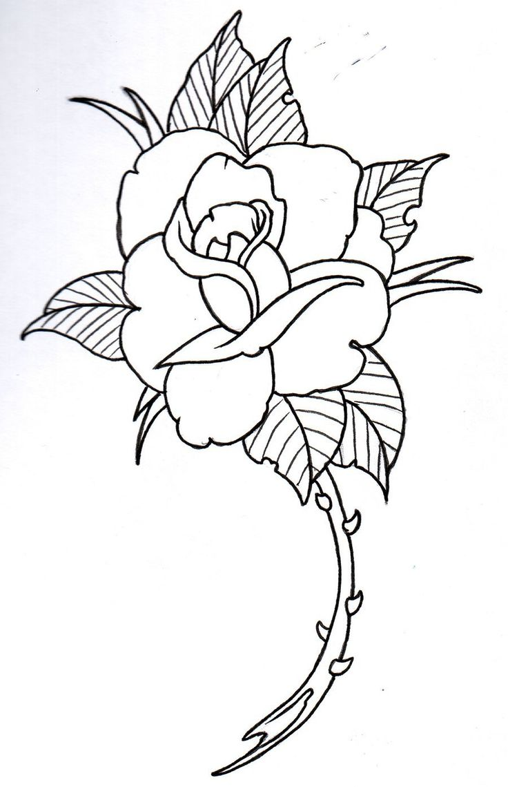 Uncategorized Small Rose Drawing the 25 best rose outline ideas on pinterest simple tattoo 4 by vikingtattoo deviantart
