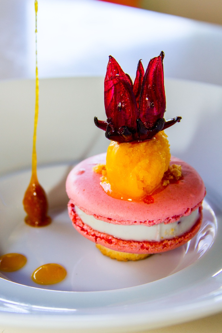 Hibiscus fantasy dessert at sofitel so mauritius - Mauritian cuisine 100 easy recipes ...