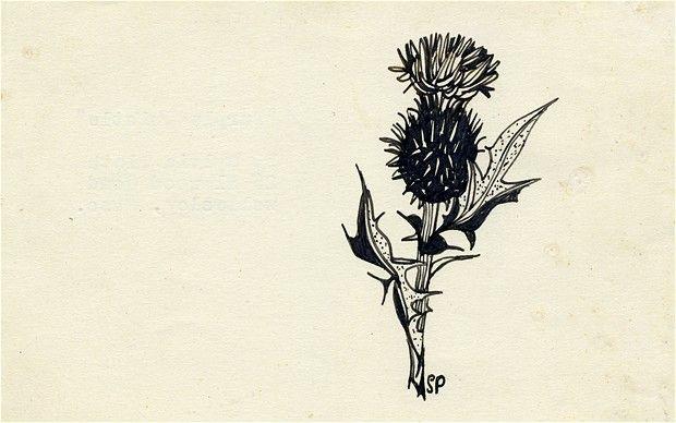 Sylvia Plath drawings. Tx @Elizabeth Pickett! http://www.brainpickings.org/index.php/2012/06/14/sylvia-plath-drawings/