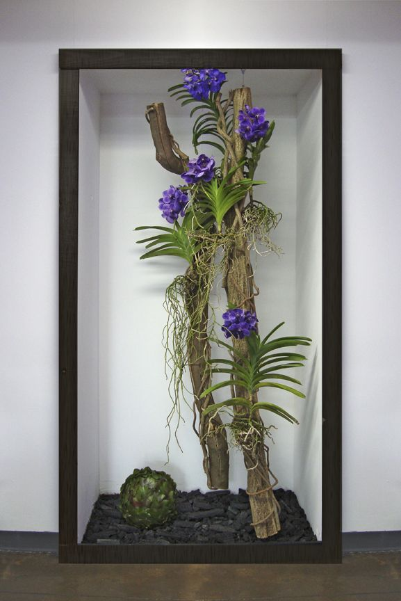 Suspended Orchid Garden