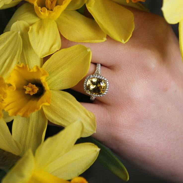 Tiffany deep yellow sapphire ring set in platinum with a halo of white diamonds. Discover the best gemstone for a coloured engagement ring, whether it is traditional or not traditional in design for wedding and bridal season: http://www.thejewelleryeditor.com/bridal/article/sapphire-engagement-rings-number-one-coloured-gem/ #jewelry #daffodil