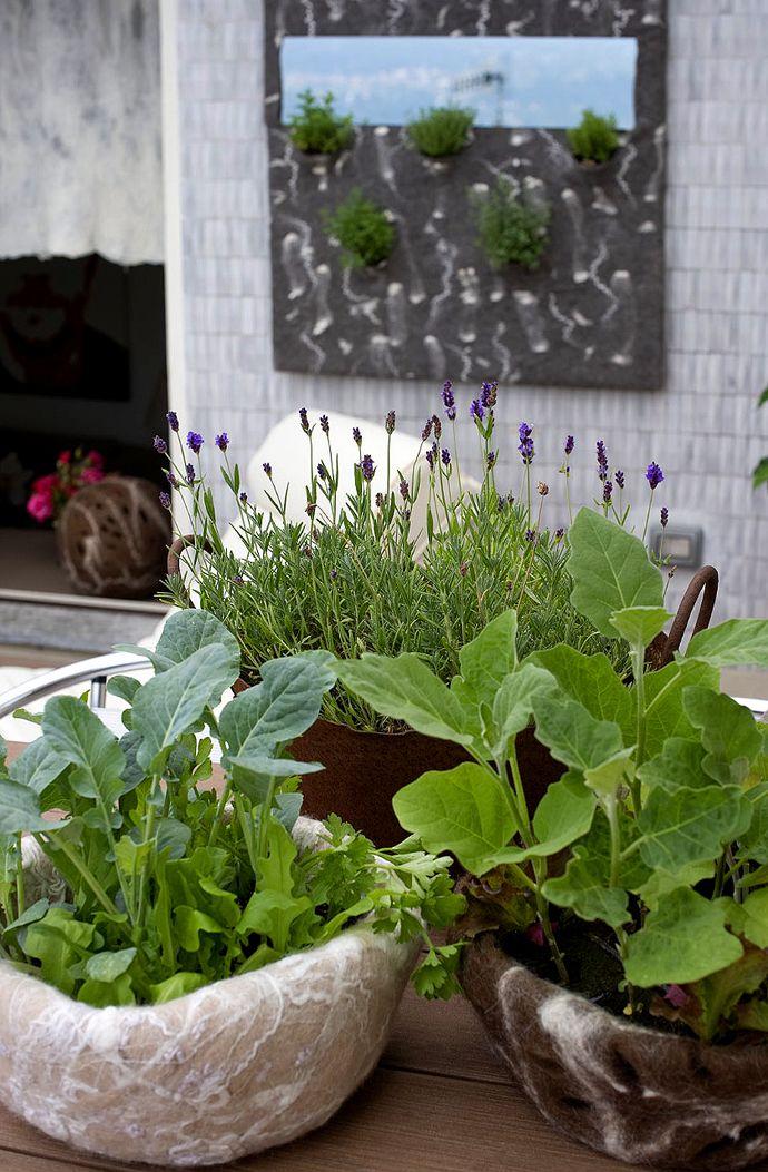 #felt Judith Byberg Architetto Designer: My Little Kitchen Garden