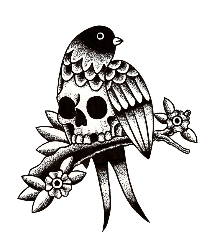 17 best ideas about bird skull on