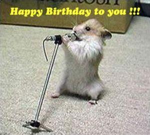 Funny Animals Saying Happy Birthday | Animals | Pinterest