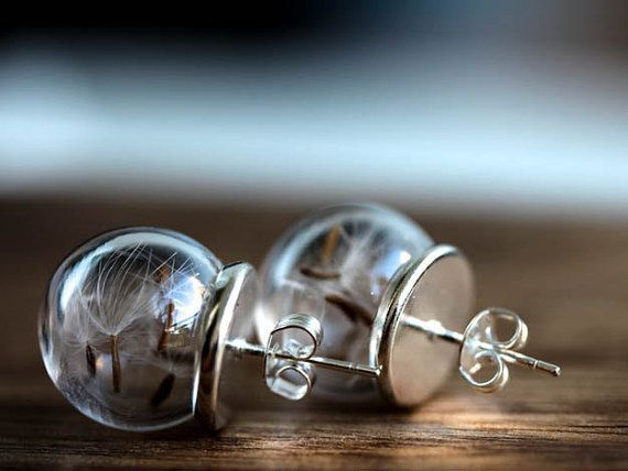 Real Dandelion Silver Stud Earrings Jewelry Glass by RafFinesse