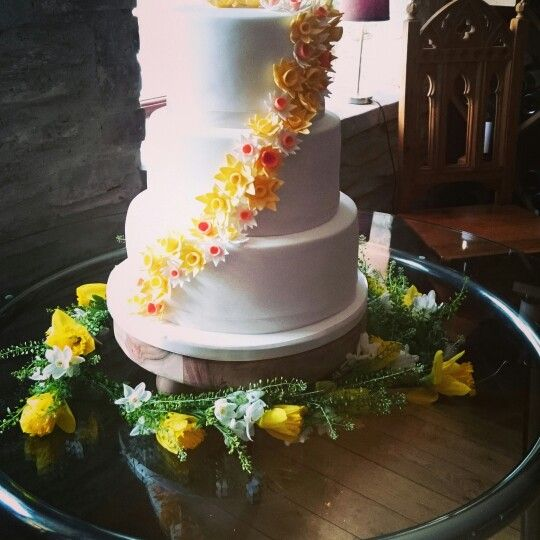Stunning 3 tier cake with a spray of daffodils, set up at Jabajaks vineyard St Clears