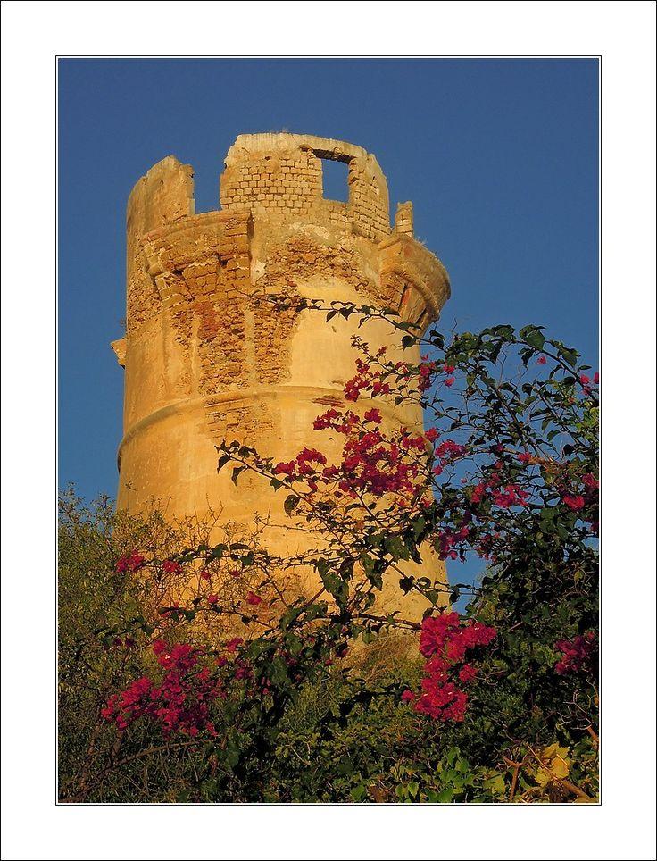 Torre di Guidaloca, Scopello, Sicily, Italy  Copyright: Denis dta