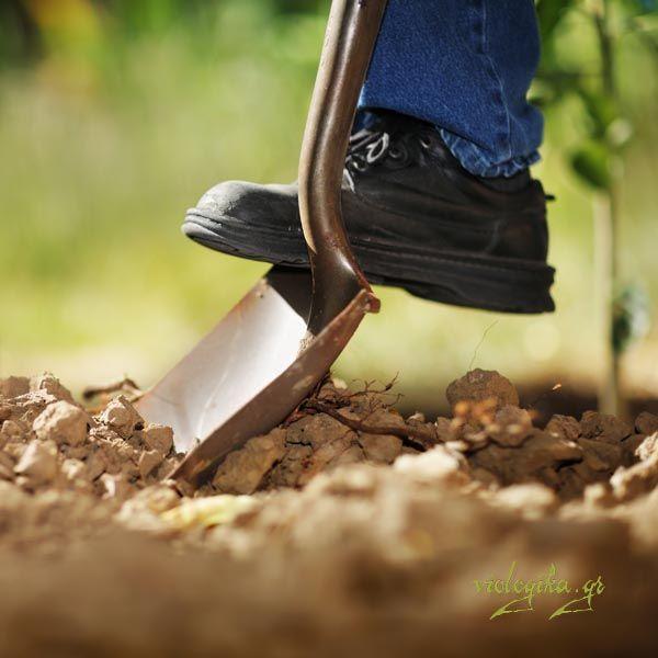Πόσο αναγκαία είναι η στήριξη της βιολογικής καλλιέργειας και γιατί;