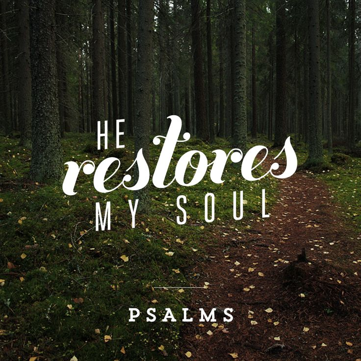 Pray Psalm 2 over those in leadership positions all over the world.
