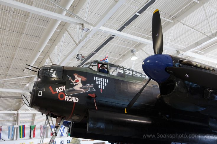 """VR-A with nose art of """"Lady Orchid"""". An interesting story to read on the web. VR-A used the center section of """"WL-O"""" in the restoration, so it seems to be two aircraft. """"Lady Orchid"""" served in the war."""