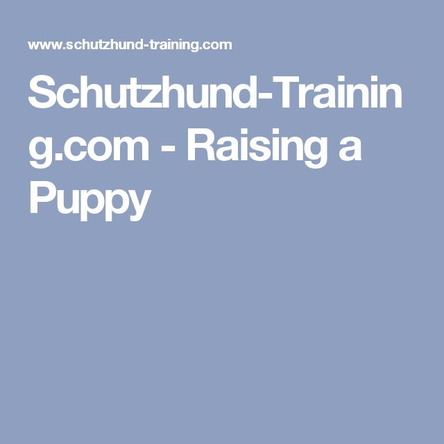 Schutzhund-Training.com - Raising a Puppy