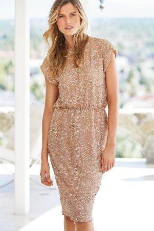 Buy Blush Sequin Dress online today at Next: Rep. of Ireland