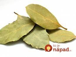 Bobkový list -  Túto rastlinu máme vo svojej kuchyni takmer všetci. Čo však skutočne dokáže a ako jej potenciál využiť naplno?