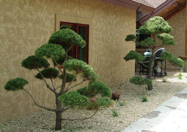 64 besten Eingangsstuffe haus Bilder auf Pinterest Gärtnern - garten und landschaftsbau bilder