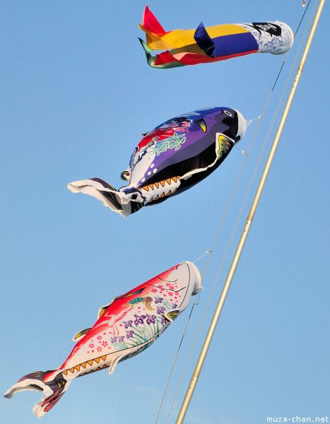 Koinobori, literally koi = carp and nobori = banner, are carp-shaped wind socks traditionally flown in Japan to celebrate the Tango no Sekku festival. Even if they are traditionally used only once a year, they are sold throughout the year as souvenirs.