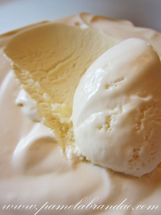 Condensed Milk Ice Cream recipe 3 ingredients - heavy cream, vanilla, sweetened condensed milk - no churn/no machine!