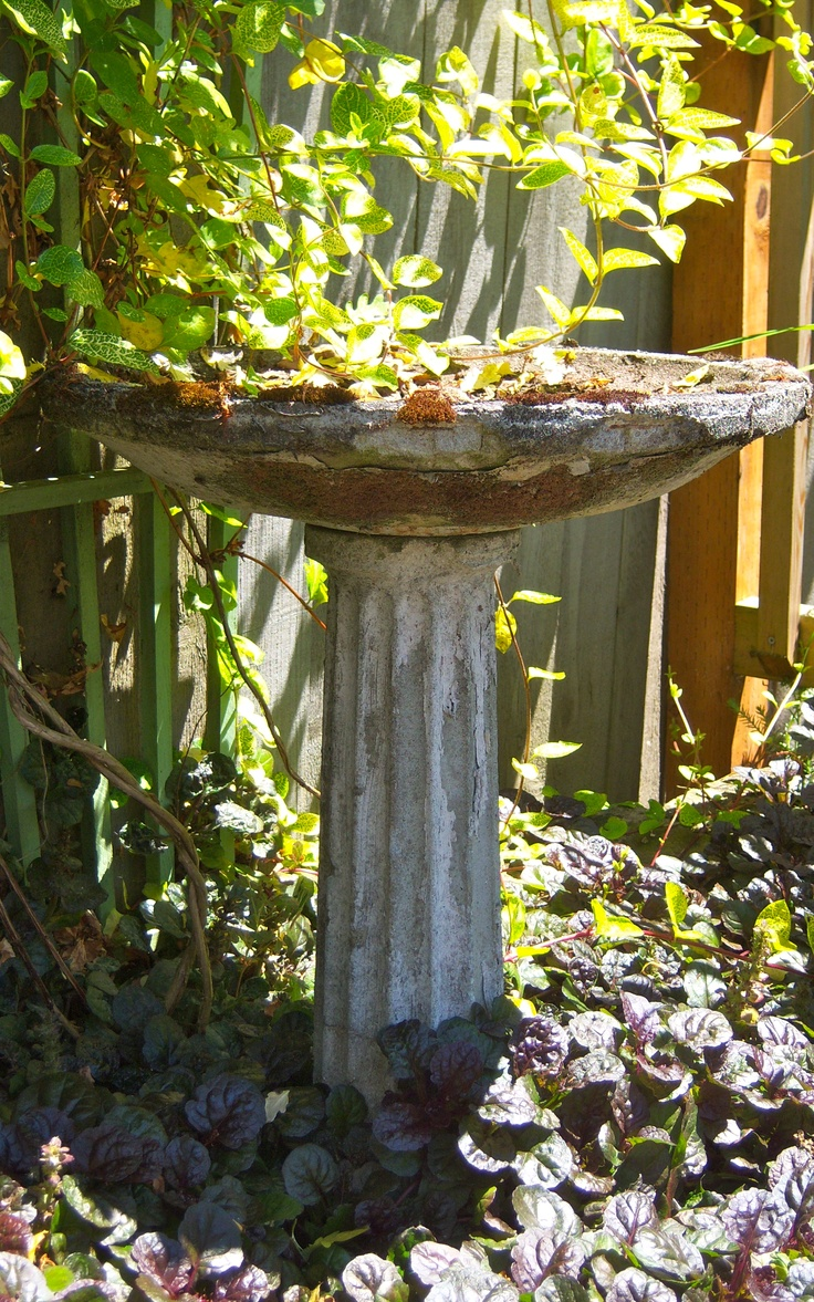 Talavera ceramic birdbaths eclectic bird baths phoenix by - One Of My Bird Baths