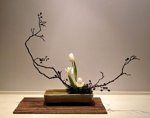 Alder branches, Tulips, pine. Variation no. 2, slanting moribana.  The Nordic Lotus Ikebana Blog: Curved Lines in Basic Styles