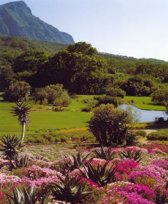 Kirstenbosch gardens, South Africa . .One of the world's horticultural wonders.