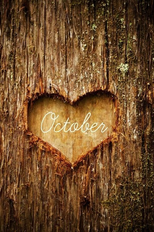 October <3, my favorite month of the year. The weather is perfect and everything is beautiful.