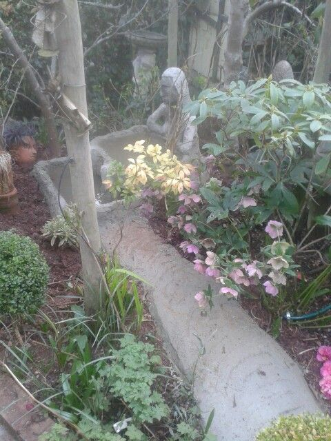Environmental rain water fed water feature Weeping Lady.