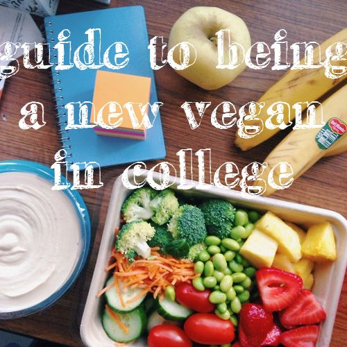 """ohiovegan: """"I like to think that college is the time you find yourself. You're away from home/your parents and have the independence to try new things on your own. My first year of college, I was a..."""