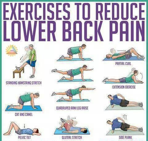 WebMD.com: Exercises to reduce back pain - Low back pain is very common among adults and is often caused by overuse and muscle strain or injury. Treatment can help you stay as active as possible.
