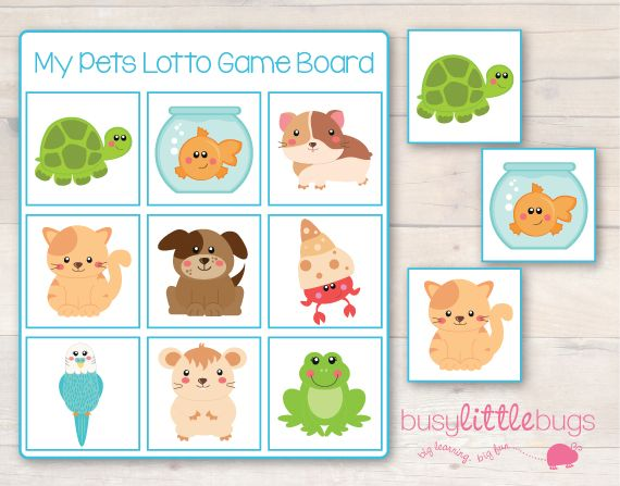 Free My Pets Lotto Game from Busy Little Bugs