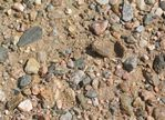 Edward's Garden Center offers all kinds of bulk gravel and mulch for your project. www.edwardsgardencenter.com