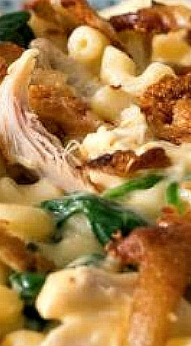 Chicken And Spinach Mac And Cheese Recipe Southern Comfort