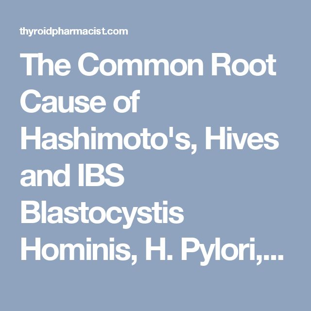 The Common Root Cause of Hashimoto's, Hives and IBS Blastocystis Hominis, H. Pylori, and Yeast Over Growth | Thyroid Pharmacist