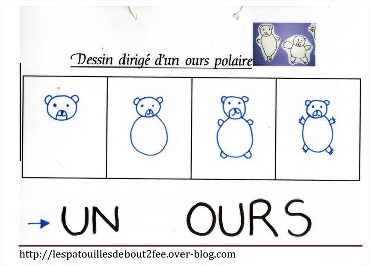 dessin dirigé de l'ours