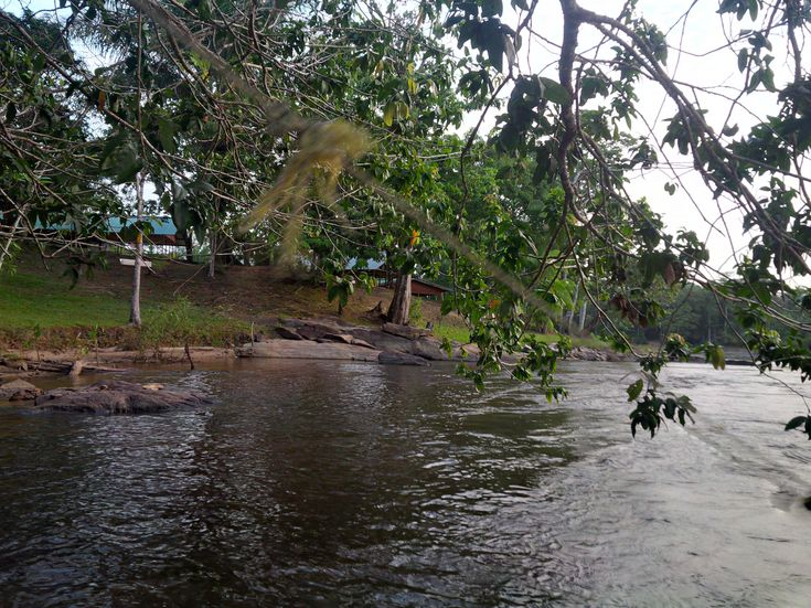 View from the Rapids, Bakaaboto Resort Boven-Suriname (5)