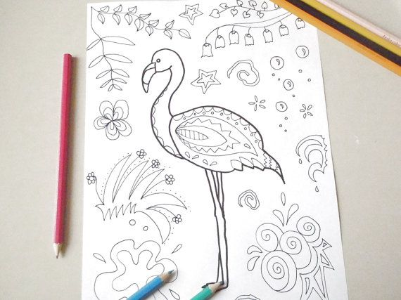 flamingo adults coloring kids tropical diy zen doodle animals pet colouring book bird printable activities kitsch doodling lasoffittadiste
