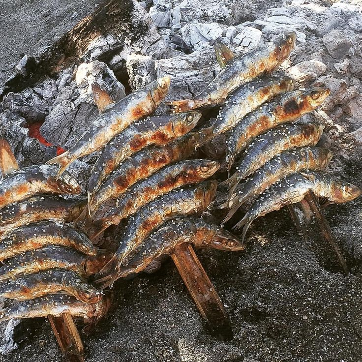 Lunch today was a traditional 'espeto' of sardines ... Happy Friday folks! #HappyFriday #sardines #foodpic #foodstagram #espeto #beach #lunch #dayoff #bbq #instagood