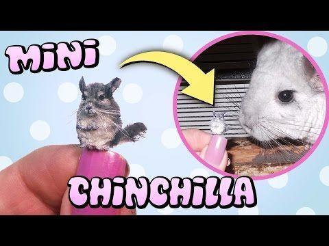 Cute Miniature Chinchilla Tutorial // DIY Dolls/Dollhouse - YouTube