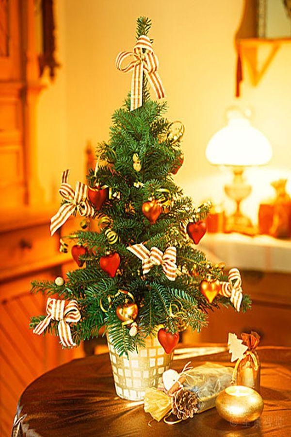30 Beautiful Christmas Tree Ideas Indoor Christmas Decorations Beautiful Christmas Trees Beautiful Christmas